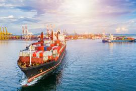 Projetos de Exportação Nueva Zelanda | Garra International