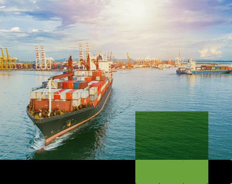 Proyectos de exportación | Garra International