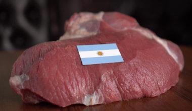 Argentina perde US$ 100 milhões por mês com redução nas exportações Índia | Garra International