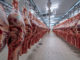 Beef exports are expected to reach close to 12 million tons in 2022 | Garra International